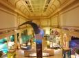 Oceans Exhibit, Washington, D.C.